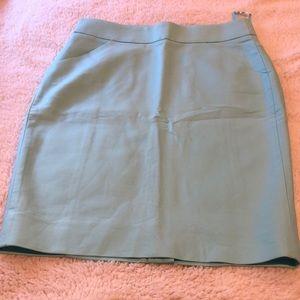 NWOT JCrew skirt